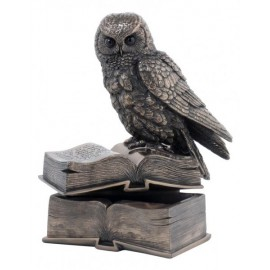 Owl on books - trinket box