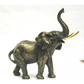 Słoń w brązie