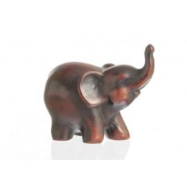 Słoń mały